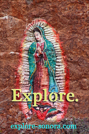 Explore Sonora Mexico!